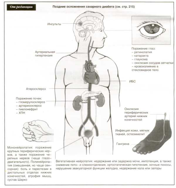 врач диетолог уфа